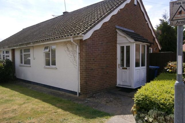 Thumbnail Bungalow to rent in 49 Cricket Ground Road, Norwich