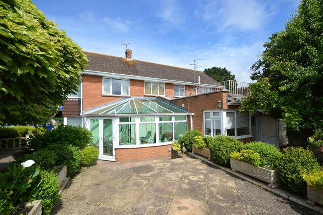 Thumbnail Detached house for sale in Main Road, Pinhoe, Exeter, Devon