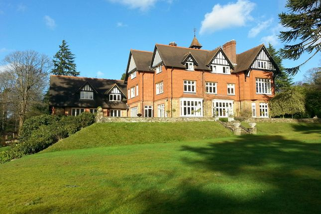 Thumbnail Detached house for sale in Farnham Lane, Haslemere, Surrey