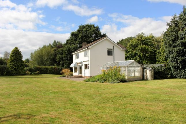 Thumbnail Detached house to rent in Madams Paddock, Chew Magna