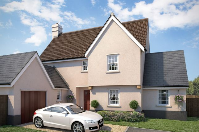 Thumbnail Detached house for sale in Apple Tree Mews, Cuckoo Hill, Bures