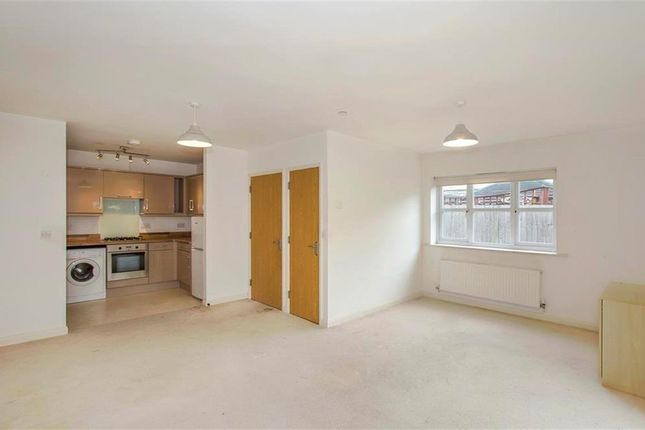 Thumbnail Property to rent in Murley Road, Winton, Bournemouth