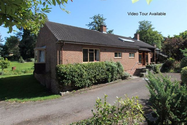 Thumbnail Detached bungalow for sale in Smallbrook Road, Ross-On-Wye