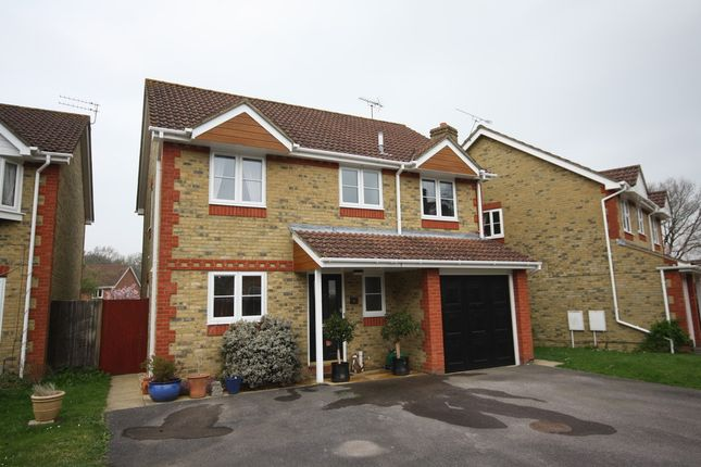 Thumbnail Detached house for sale in Steinbeck Close, Whiteley, Fareham