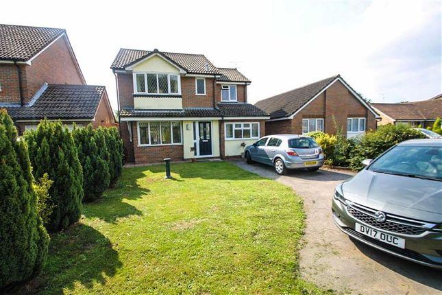 Thumbnail Detached house for sale in Beldams Close, Thorpe-Le-Soken, Clacton-On-Sea