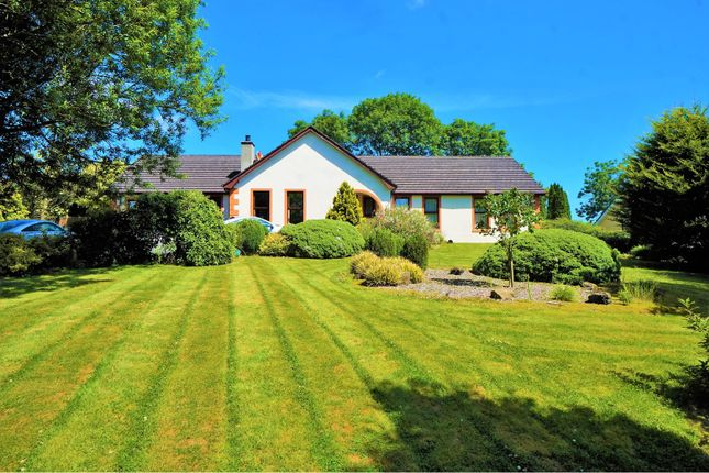 Thumbnail Detached bungalow for sale in Ballycorr Grove, Ballyclare