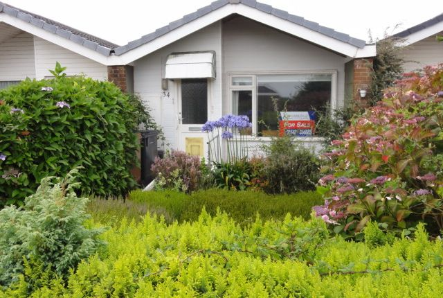 Thumbnail Bungalow for sale in Cumber Close, Malborough
