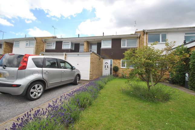 Thumbnail Terraced house to rent in Knockholt Road, Cliftonville, Margate