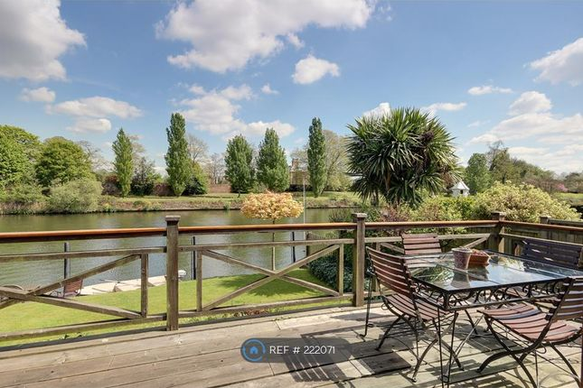 Thumbnail Detached house to rent in The Island, Thames Ditton