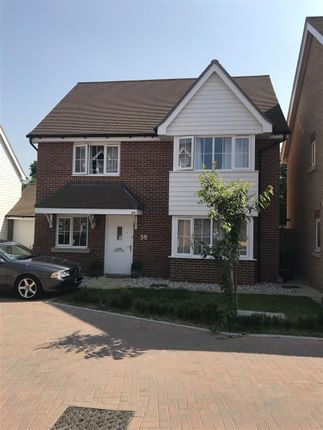 Thumbnail Detached house for sale in Clifford Crescent, Sittingbourne