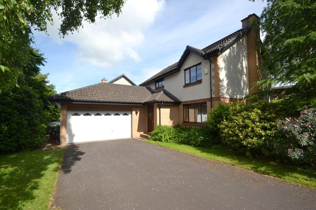 Thumbnail Detached house to rent in Annfield Gardens, Stirling