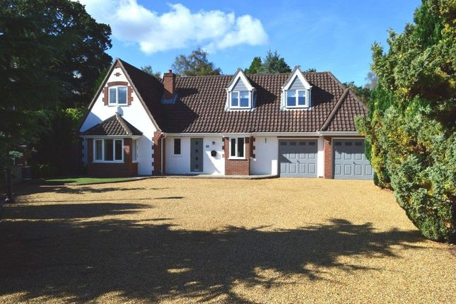 Thumbnail Detached house to rent in Heath Road, Thorpe End, Norwich