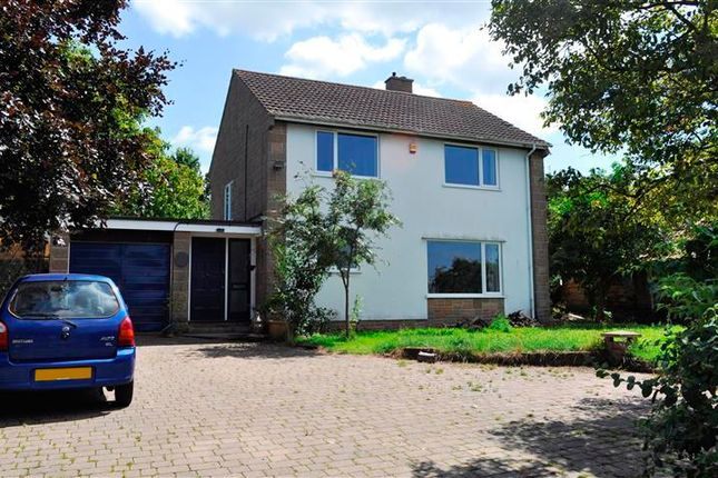 Thumbnail Detached house to rent in Ham, Creech St. Michael, Taunton