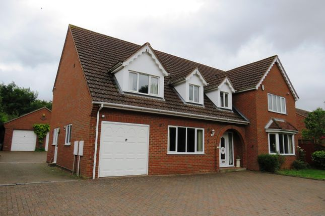 Thumbnail Detached house to rent in West Winch Road, West Winch, King's Lynn