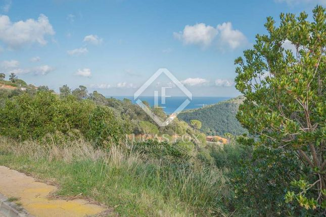 Thumbnail Land for sale in Spain, Costa Brava, Sa Riera / Sa Tuna, Cbr4958