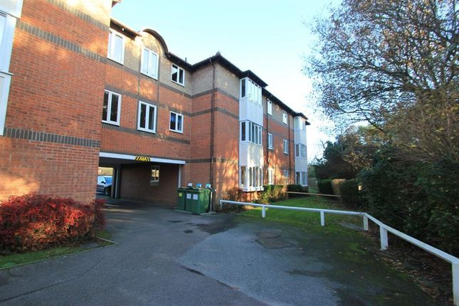 Thumbnail Flat to rent in Friday Wood Green, Colchester