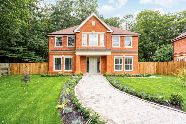 Thumbnail Detached house for sale in The Covert, Ascot