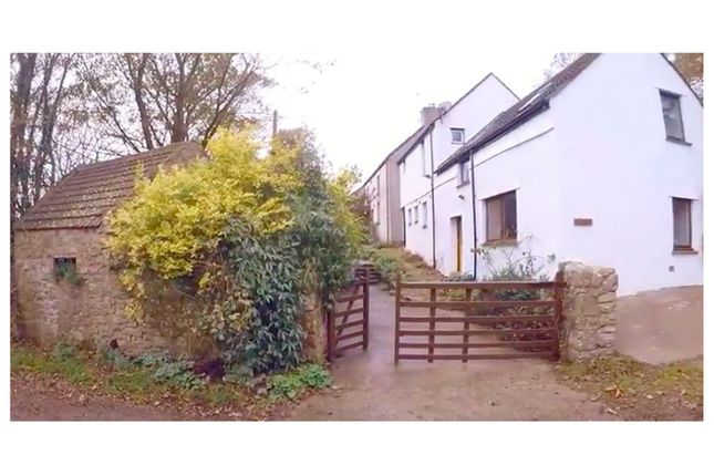 Thumbnail Detached house for sale in Rhossili, Gower