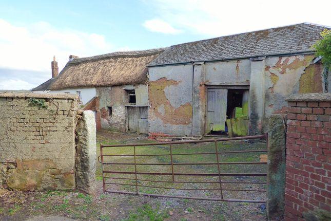 Thumbnail Property for sale in Exbourne, Okehampton