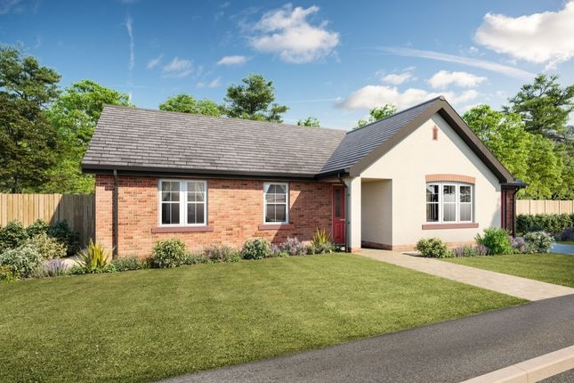 Thumbnail Bungalow for sale in Summerpark Road, Dumfries