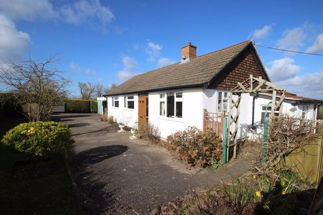 Thumbnail Detached bungalow for sale in Upper Lyde, Hereford