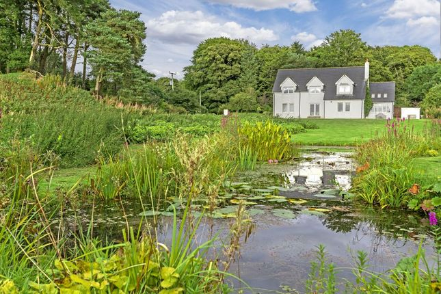Thumbnail Country house for sale in Little Haugh, Howgate