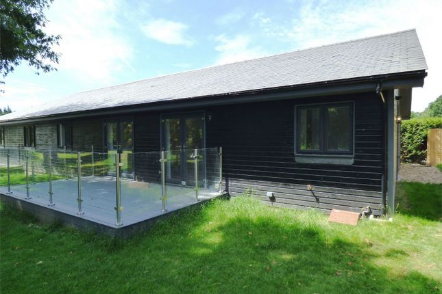 Thumbnail Semi-detached bungalow to rent in Farnham