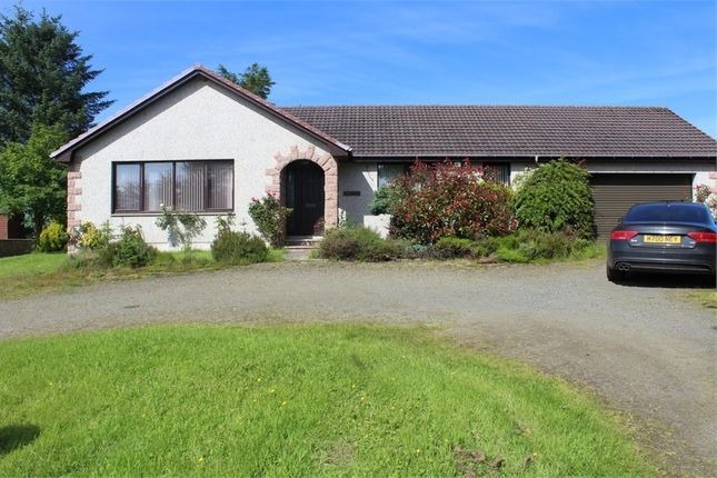 Thumbnail Detached bungalow for sale in Crudie, Turriff, Aberdeenshire