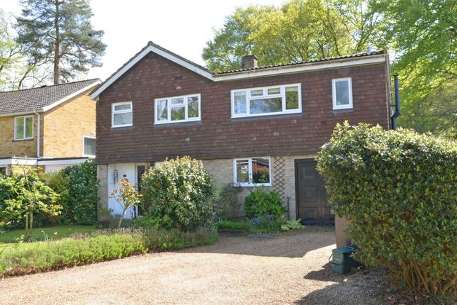 Thumbnail Detached house for sale in Bramble Bank, Frimley Green, Surrey