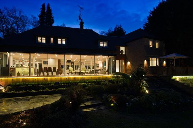 Thumbnail Detached house to rent in Brackens, Beech Close, Cobham, Surrey