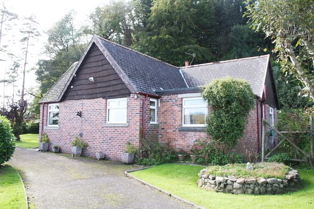 Thumbnail Detached bungalow for sale in The Stell, Kirkcudbright