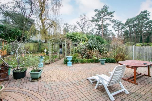 Garden of Grosvenor Close, Ashley Heath, Ringwood BH24