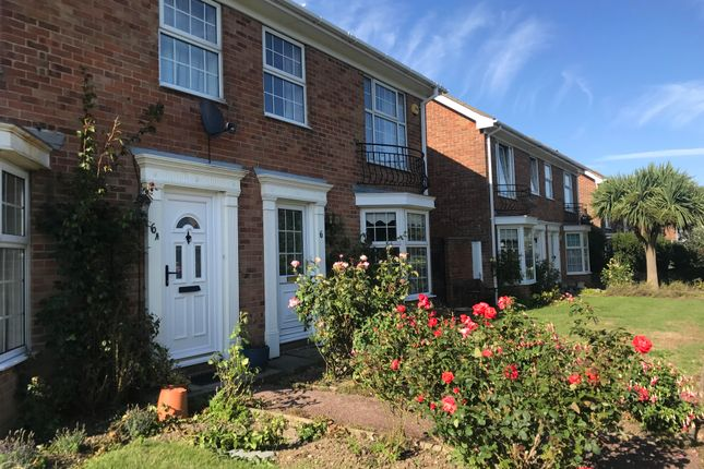 Thumbnail Semi-detached house to rent in Sturdy Close, Hythe