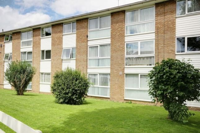 Thumbnail Flat for sale in Mintern Close, Hedge Lane, Palmers Green
