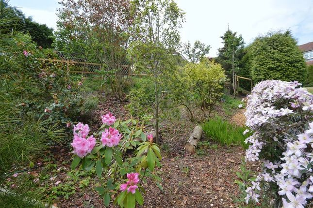 Photo 13 of Southlands Park, Midhurst GU29