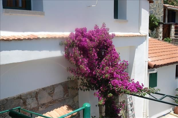 2 bed detached house for sale in Spelt Limassol, Limassol, Cyprus