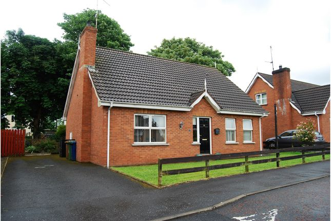 Thumbnail Detached house for sale in Forest Glade, Lurgan