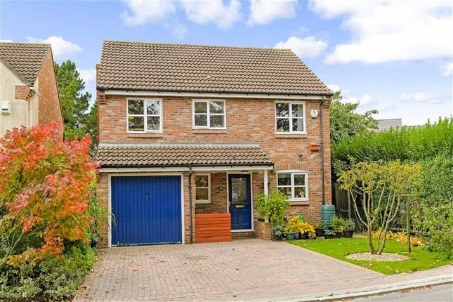 Thumbnail Detached house for sale in St. Thomas's Way, Green Hammerton, York