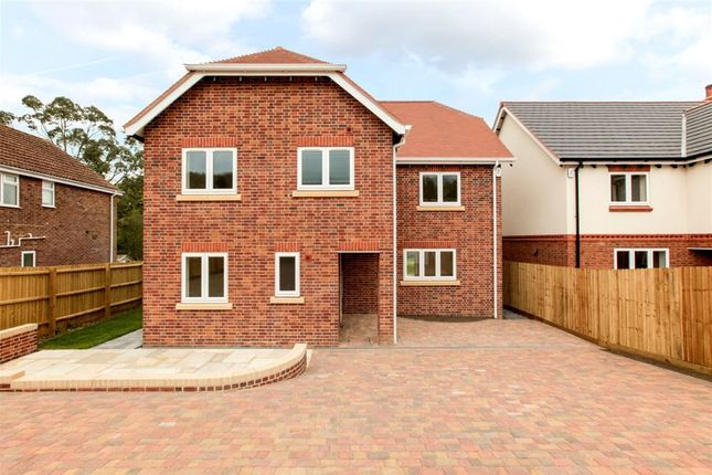 Thumbnail Detached house for sale in Beech Close, Spetisbury, Blandford Forum, Dorset