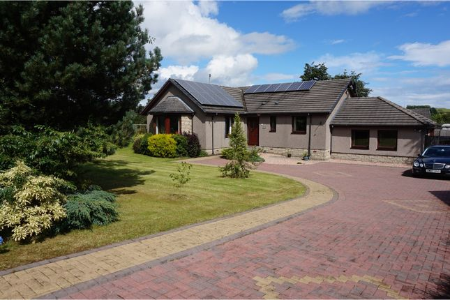 Thumbnail Detached bungalow for sale in Mill Gardens, Powmill
