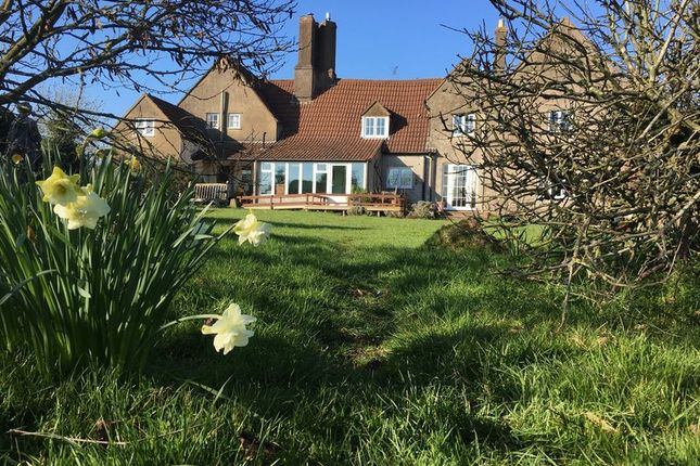 Thumbnail Detached house for sale in Flaxley, Newnham