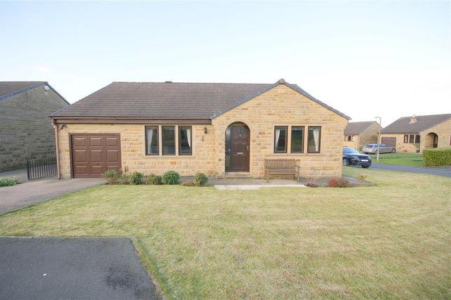 Thumbnail Bungalow to rent in Blakelaw Drive, Clifton, Brighouse