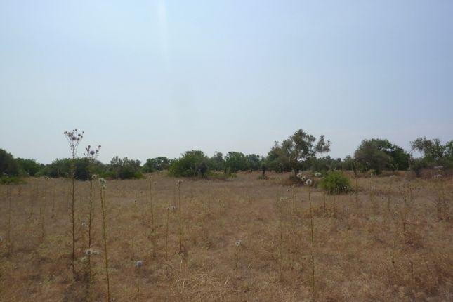 Land for sale in Cayirova, Famagusta, Cyprus