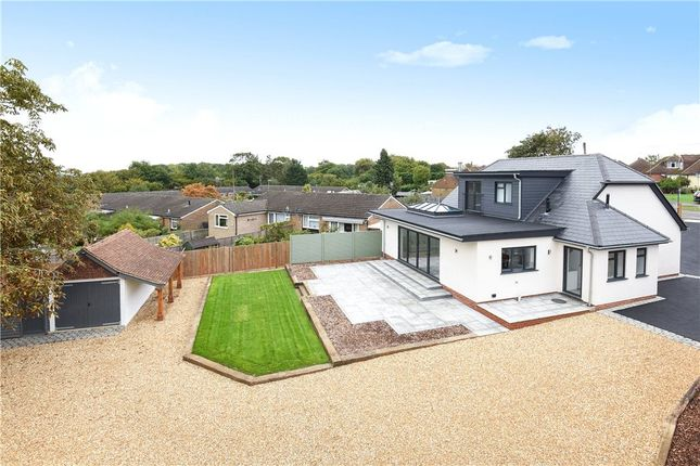 Thumbnail Detached bungalow for sale in Christmas Pie Avenue, Normandy, Guildford