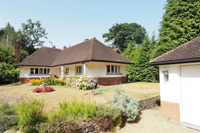 Thumbnail Detached bungalow for sale in London Road, Petersfield