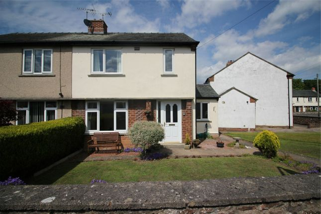 Thumbnail Semi-detached house to rent in 20 Scattergate Green, Appleby-In-Westmorland, Cumbria