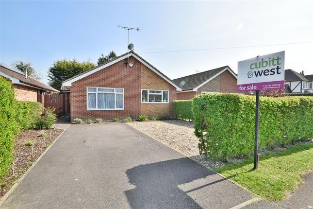 Thumbnail Bungalow for sale in Wolverton Gardens, Horley, Surrey