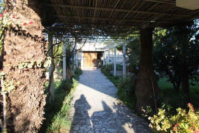 Thumbnail Villa for sale in Spain, Valencia, Alicante, Benidorm