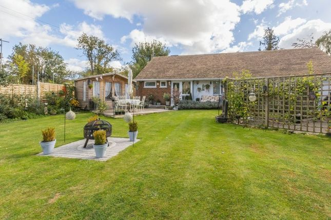 Thumbnail Detached bungalow for sale in The Street, Adisham, Canterbury