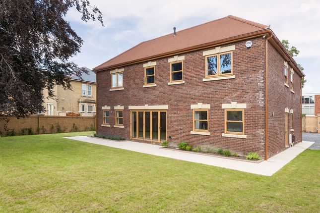 Thumbnail Detached house for sale in Langstone Road, Havant